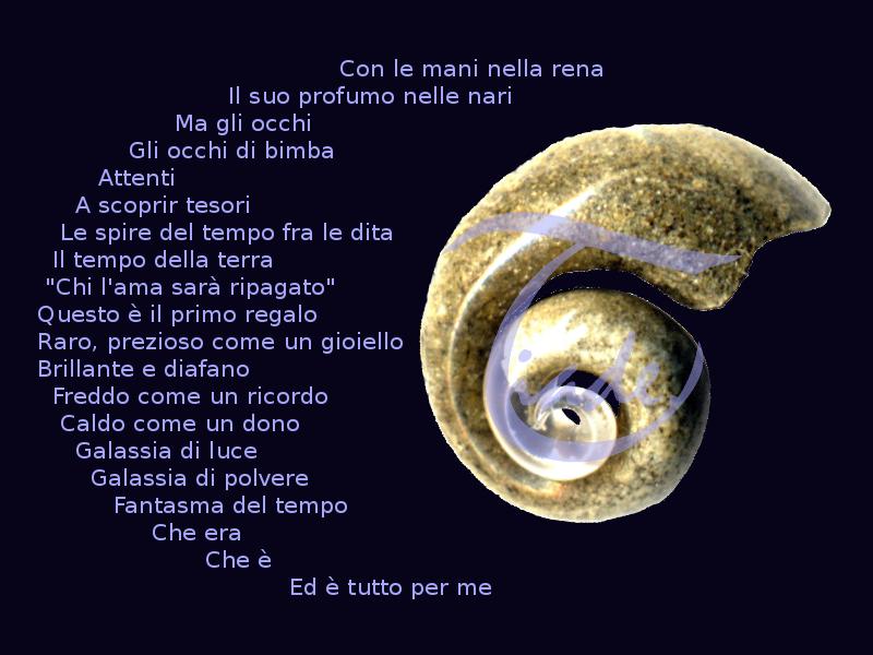 Fossile nautiloide